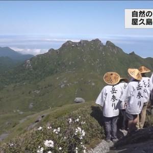 自然の恵みに感謝 屋久島・宮之浦 岳参り【MBCテレビ「ニューズナウ」】