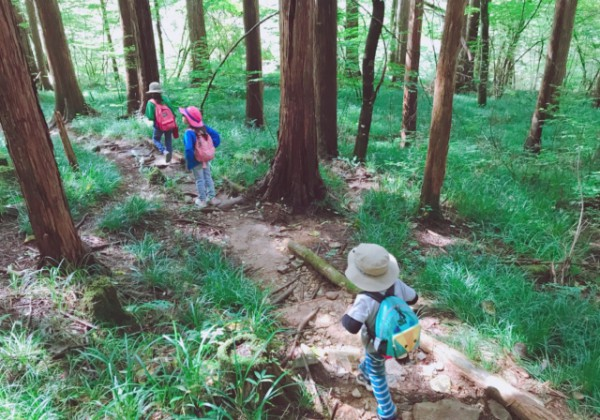 9月セミナー『魅力発見 やくしま旅』参加者募集!