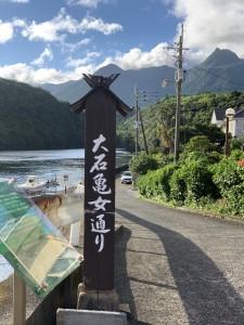 野口真由美さん/書家・屋久島町文化協会長