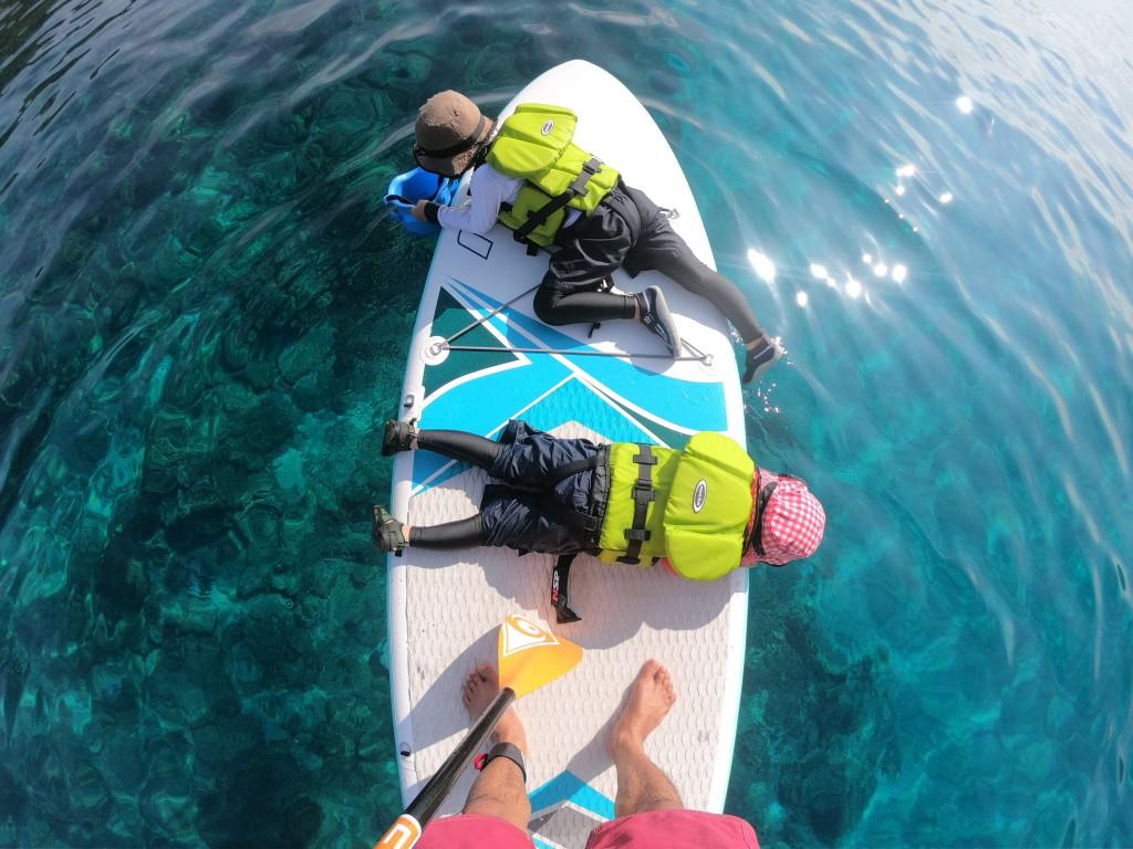 「屋久島の夏の海を探検」撮影:加藤葵賛史 | 一湊(元浦)