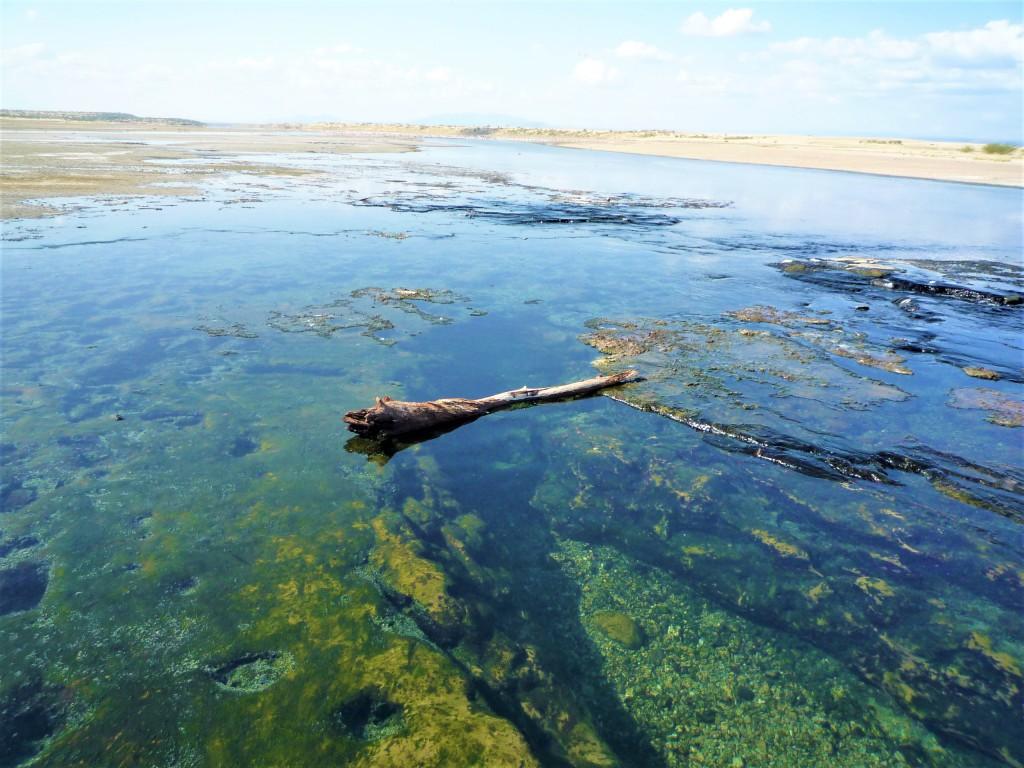 マガディ湖の天然の湯船
